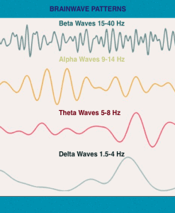 brain waves pic